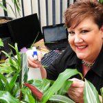 7 Planten die je Fit en Productief houden op het Werk